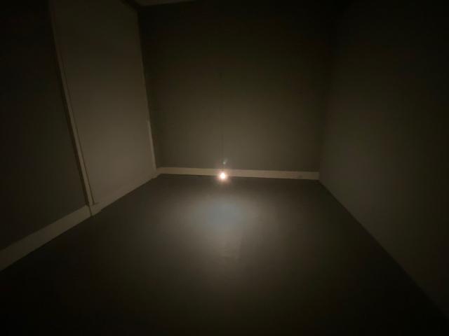 Lightbulb to Simulate Moonlight (2008)